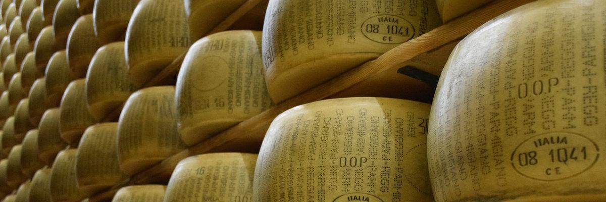 Forme di formaggio in stagionatura